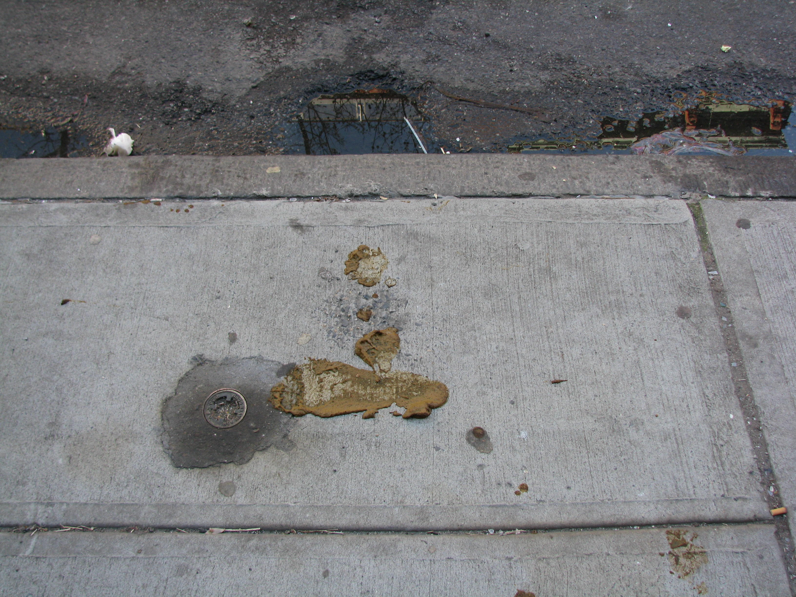Barefoot footprint in dog shit