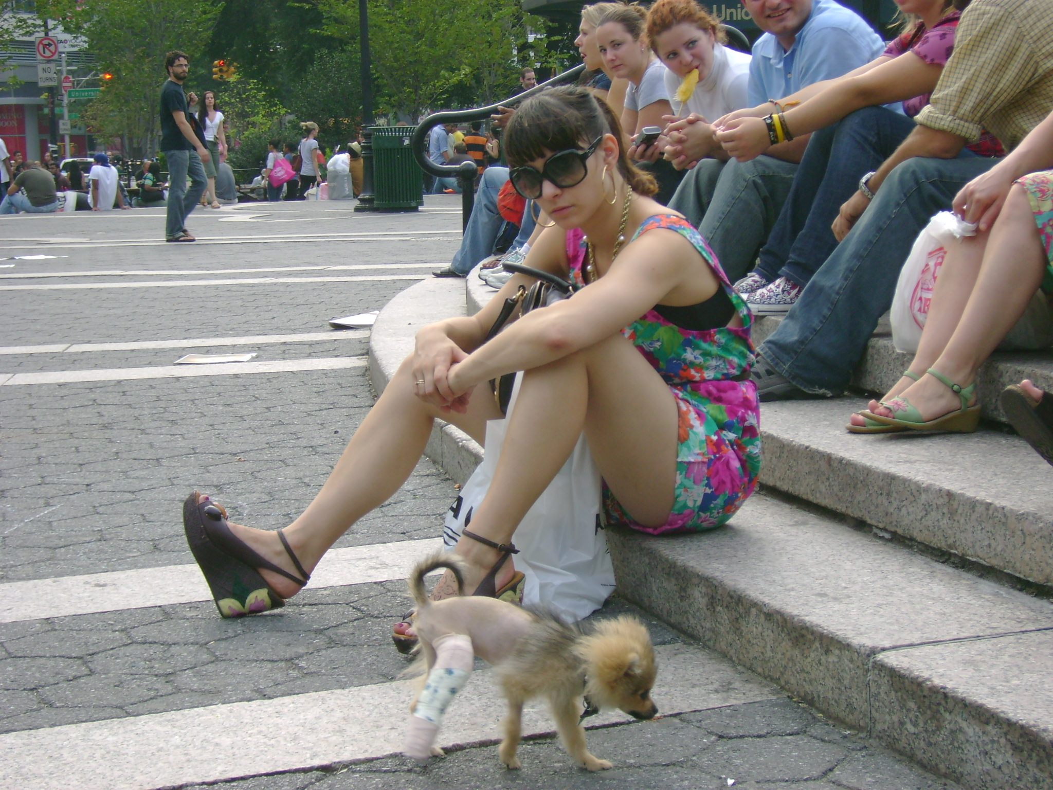Woman w/Dog in Leg Cast
